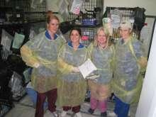 Maddie's Shelter Medicine Staff