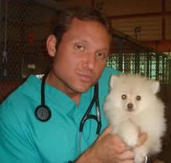 Andrew Scarbrough, Maddie's® Shelter Medicine Extern