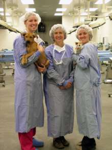Dr. Natalie Isaza and Veterinary Students